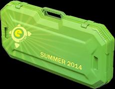 Летний кейс eSports 2014 (Случайное оружие)