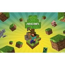 Minecraft Premium Доступ на сайт/Смена скина + Подарки