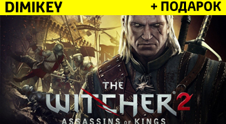 The Witcher 2: Assassins of Kings + подарок [STEAM]