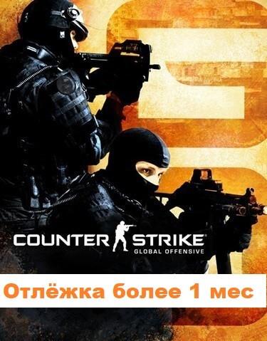 Купить Counter-Strike Global Offensive (отлёжка более 1 мес)
