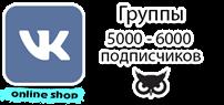 Группа в контакте от 5000 до 6000 подписчиков