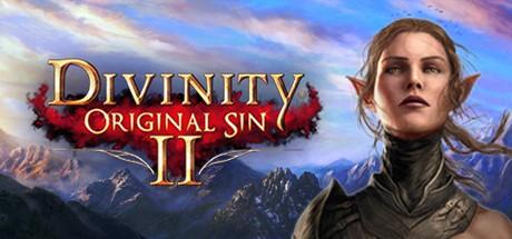 Divinity: Original Sin 2 - Steam Gift | RU