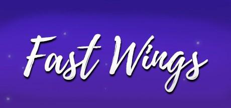 Fast Wings (Steam key/Region free)