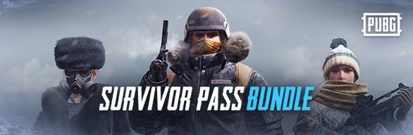 PUBG — Survivor Pass 4 Aftermath (Steam Ключ. Ру/СНГ)