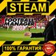 FOOTBALL MANAGER 2 17 (STEAM GIFT | RU+CIS)