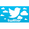 Twitter  Ретвиты