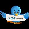 Twitter читатели 5000 Дешево Бесплатно Твиттер подписки