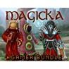 Magicka: DLC Gamer Bundle (Steam KEY) + ПОДАРОК
