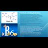 Красивая Презентация Витамин в6 Пиридоксин