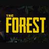 ?? The Forest  (STEAM GIFT RU)+BONUS