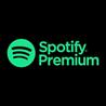 ?Spotify Premium 4 месяца ПОДПИСКА ?