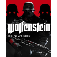 WOLFENSTEIN THE NEW ORDER / RU-CIS / STEAM