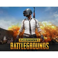 PLAYERUNKNOWN'S BATTLEGROUND (Steam KEY) + ПОДАРОК