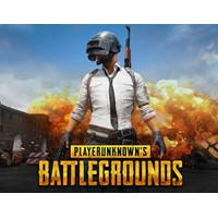 PLAYERUNKNOWNS BATTLEGROUND (Steam key) -- RU