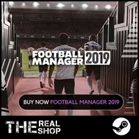 FOOTBALL MANAGER 2019 | OFFLINE |REG FREE| STEAM ✅