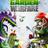 PLANTS vs ZOMBIES GARDEN WARFARE / REGION FREE / MULTI