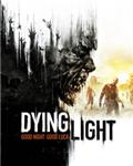 DYING LIGHT (STEAM KEY)RU+CIS