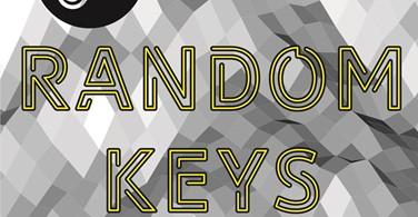 Купить лицензионный ключ Случайный ключ STEAM (все с карточками) random key на SteamNinja.ru