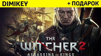 Купить The Witcher 2: Assassins of Kings + подарок [STEAM]