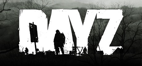 DayZ [Key / Gift] - Random Steam Ключ 100+ игр