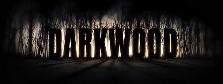 Купить Darkwood (Steam Gift RU)