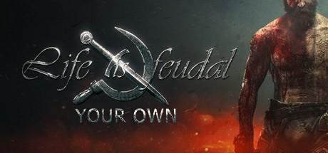 Купить Life is Feudal: Your Own (Steam RU)