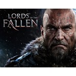 Lords Of The Fallen (steam key) -- RU