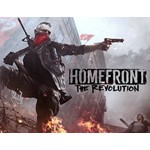 Homefront The Revolution (steam key) -- RU