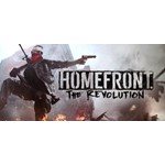 Homefront The Revolution Retail (steam key) -- RU