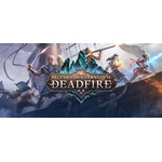 Pillars of Eternity II 2: Deadfire Obsidian Ed(Steam)RU