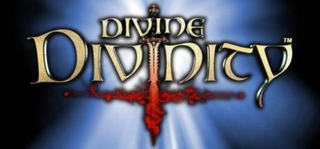 Купить Divine Divinity (Steam RU)