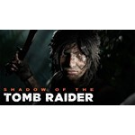 Shadow of the Tomb Raider ( Steam gift RU)