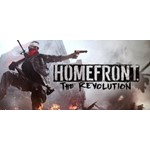 Homefront®: The Revolution (Steam | Region Free)