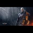The Witcher 3: Wild Hunt | Origin | Гарантия | Подарки