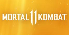 Mortal Kombat 11 Steam RU KZ