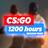 CS:GO 1200+ часов под Faceit (БЕЗ ПРАЙМА)  Почта