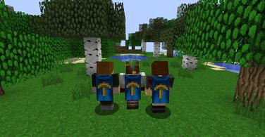 Купить аккаунт Minecraft доступ в клиент и на хайпиксель (Hypixel) на SteamNinja.ru