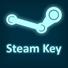 Steam key-Random (любые игры)
