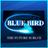 [АКЦИЯ ДО КОНЦА НЕДЕЛИ-1999RUB] Инвайт bluebird-hd.org