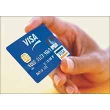 10-100 USD Visa Virtual,  Balance Sheet
