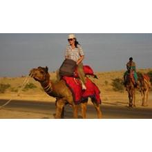LadynTramp. Big Indian travel