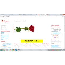 500RUB - Certificate of Payment Online PERMROZA.RU