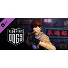 Sleeping Dogs: Retro Triad Pack 💎 STEAM GIFT RU