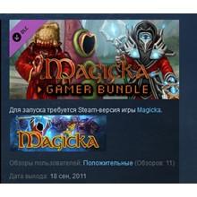Magicka: Gamer Bundle DLC STEAM KEY REGION FREE GLOBAL