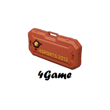 ESports Case 2013 (Random Weapon) + bonuses