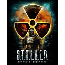 STALKER: SHADOW OF CHERNOBYL (STEAM Key) Region Free