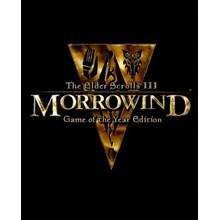 🔶The Elder Scrolls III: Morrowind GOTY Wholesale Steam
