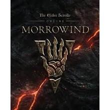 TES Online: Tamriel Unlimited + Morrowind Upgrade