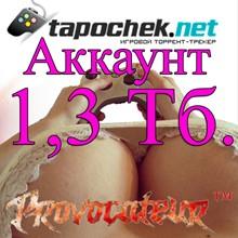 ACCOUNT TAPOCHEK.NET (TAPOCHEK.NET) 1.3 TB