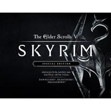The Elder Scrolls V Skyrim Special Edition Steam -- RU